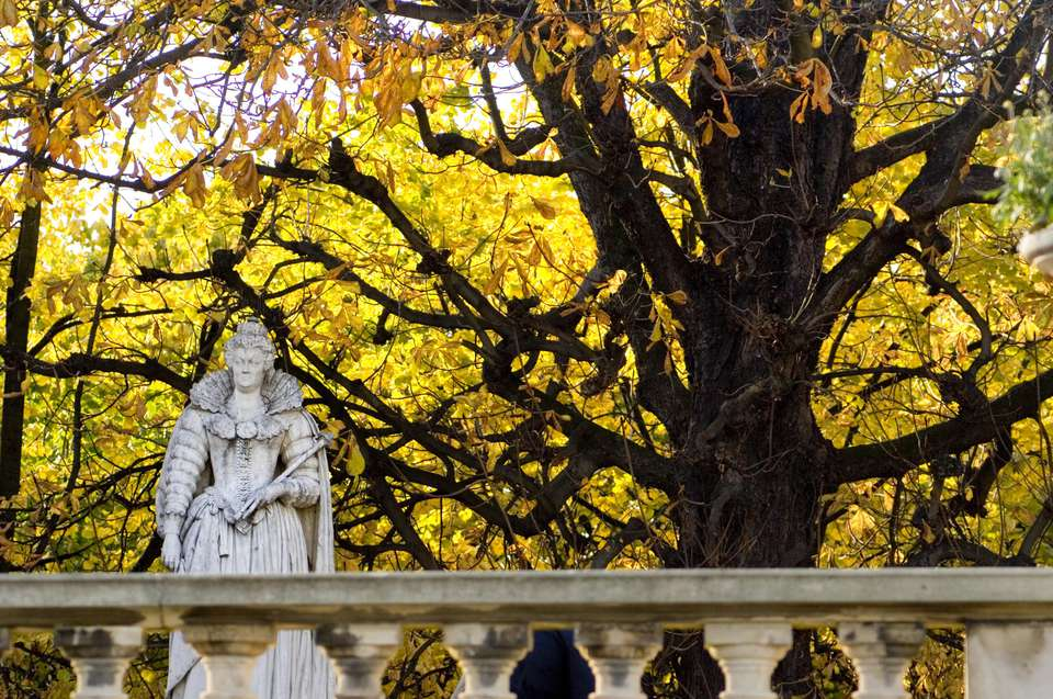 A Queen among the fall leaves at the Jardin de Luxembourg in Paris.