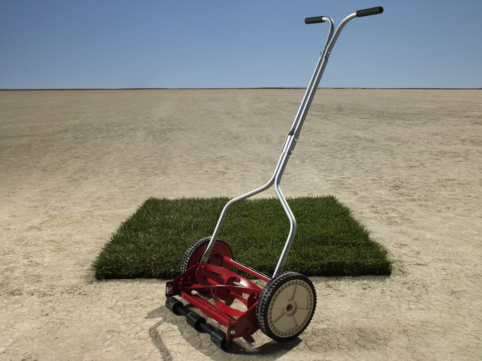 Lawn mower and patch of grass in desert