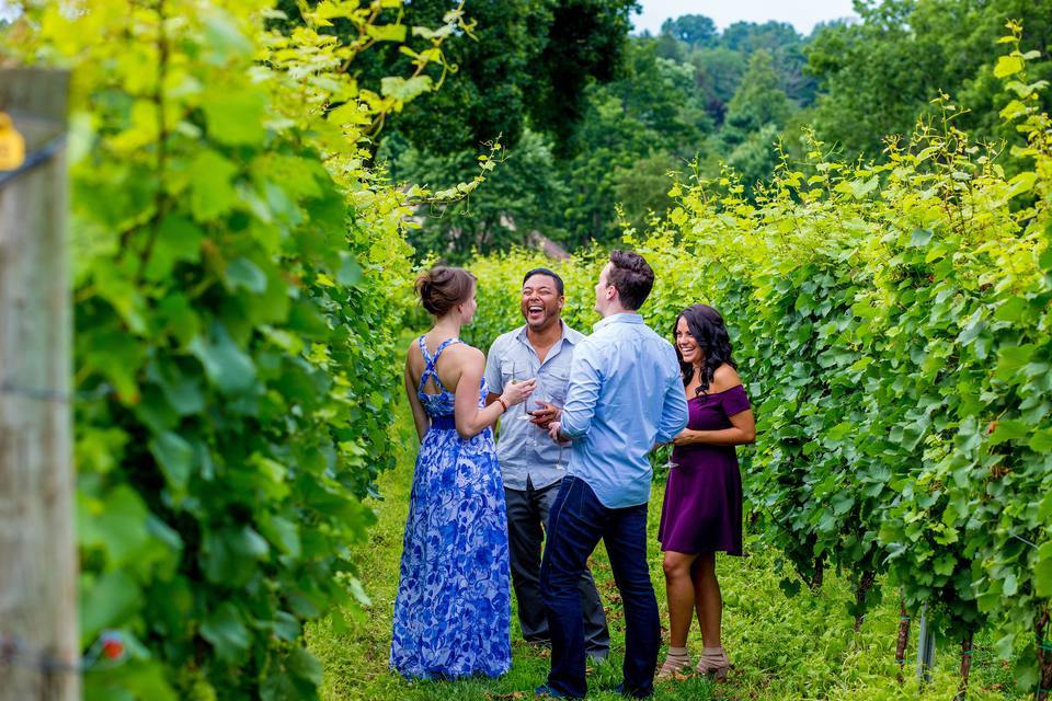 Galer Estate Vineyard and Winery in Kennett Square