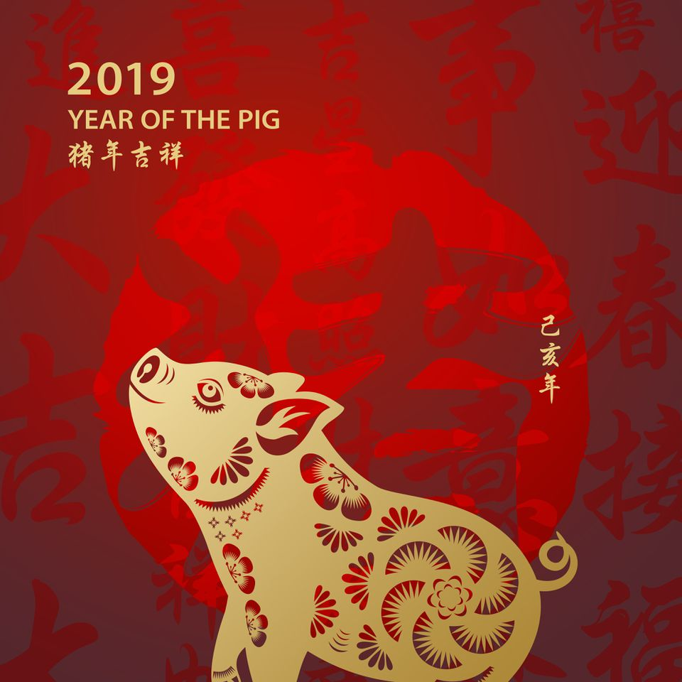 Chinese New Year 2019 begins Year of the Pig