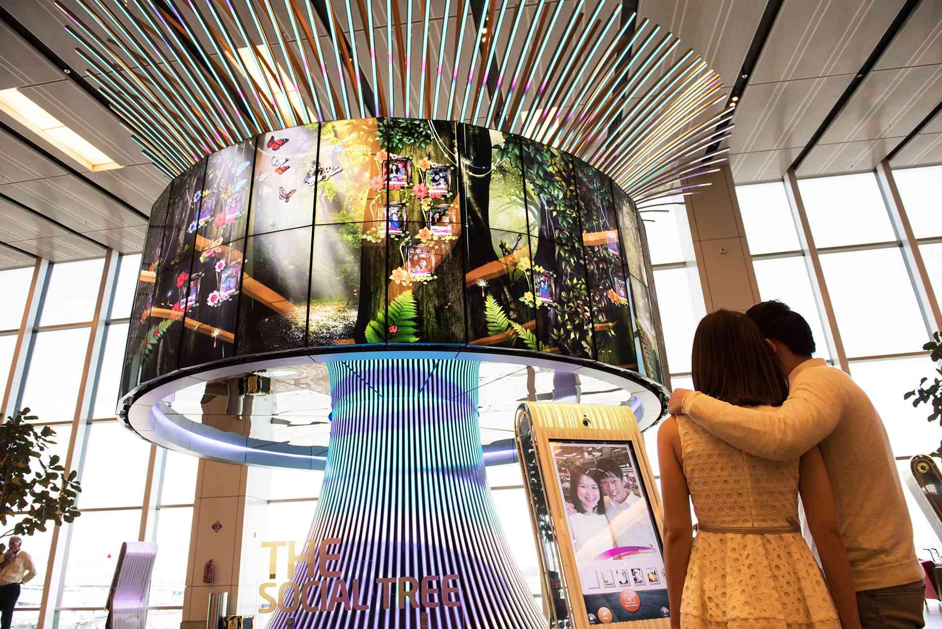 Social Tree, Terminal 1, Changi Airport