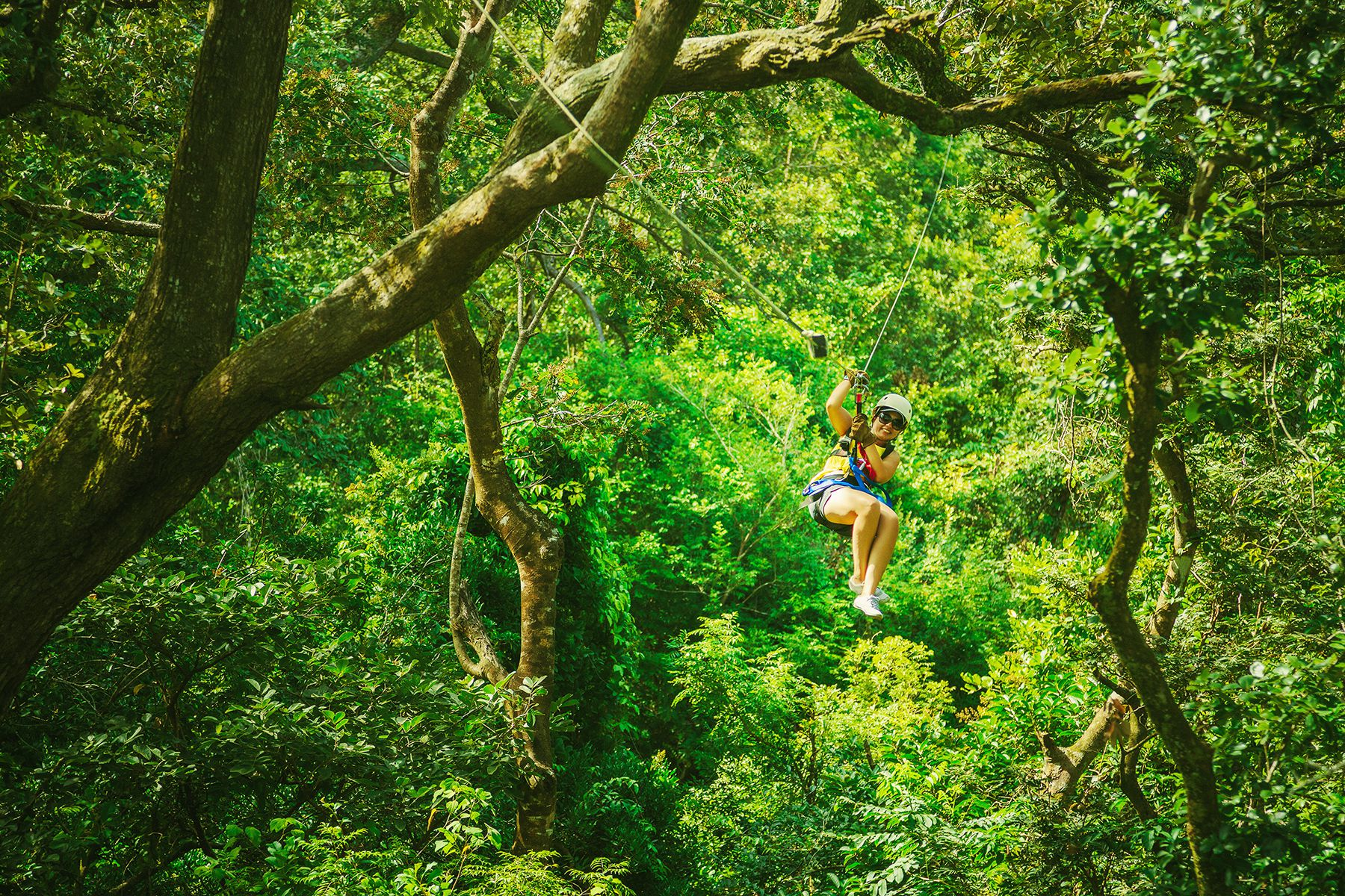 Ziplining in the Costa Rica canopy