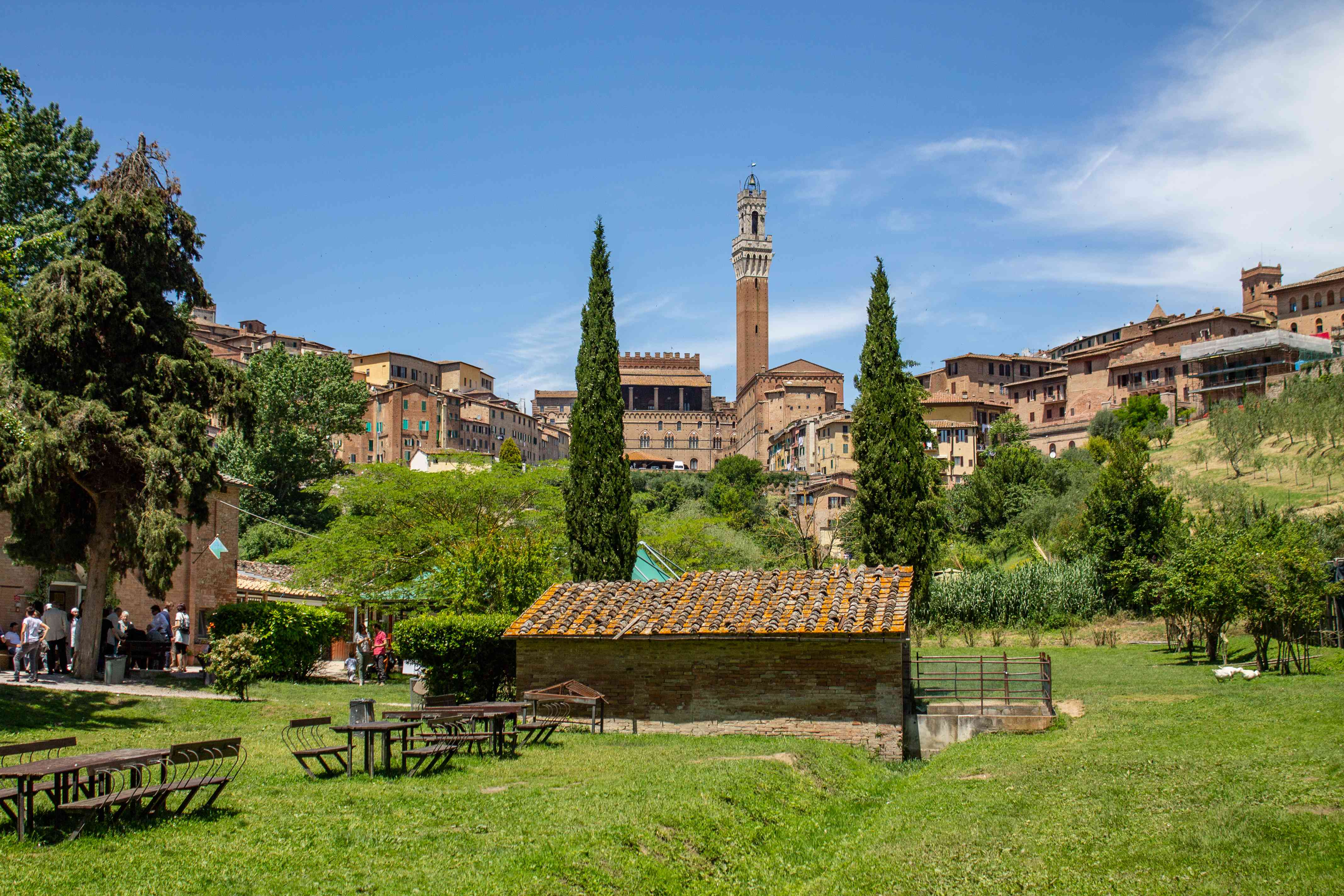 A grassy park in Siena with architecture in the background