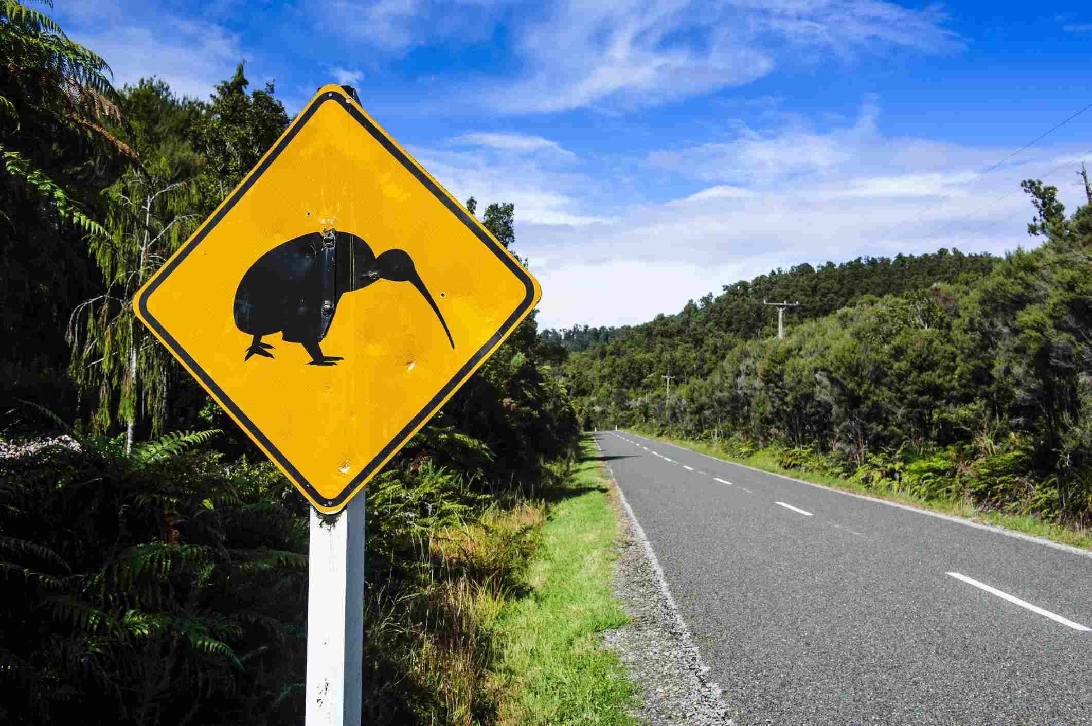 Kiwi warning sign along the road between Fox Glacier and Greymouth, South Island, New Zealand