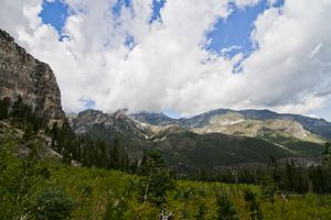 Forests and Mount Charleston