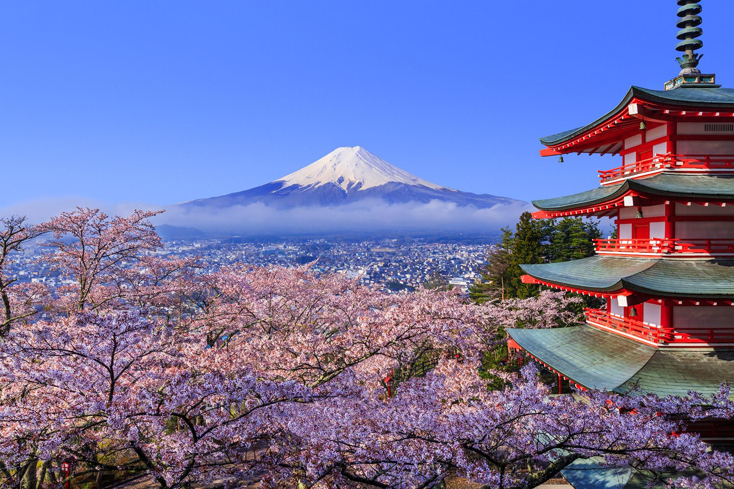Best Times to Visit Japan