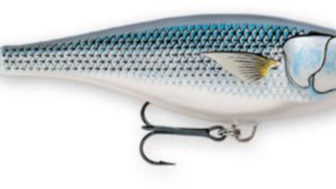 "Crawfish//Baitfish /""NEW/"" 10 Custom Silicone Spinnerbait//Jig Skirts -Bass Fishing"