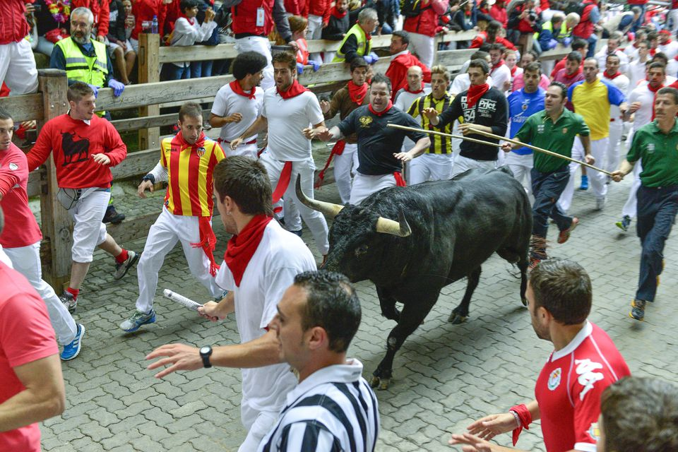 A Guide to the Bull Runs in Spain
