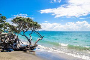 Army Bay Whangaparaoa Peninsula in Auckland, New Zealand