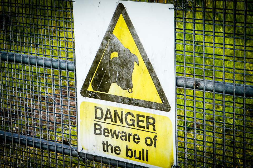 beware of bull sign in ireland