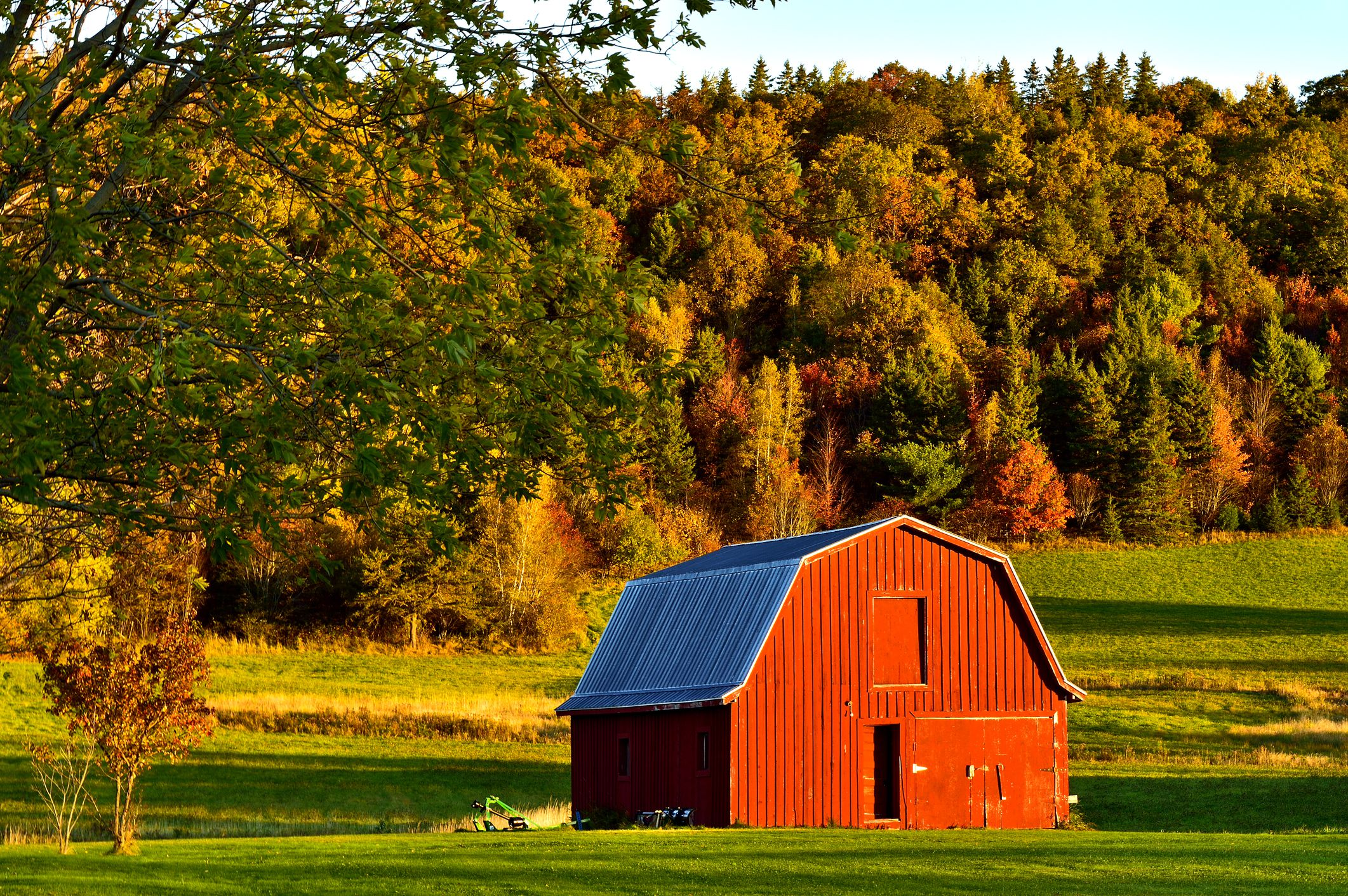 A horizontal image of a red barn on a green meadow with colorful hardwood trees as a background on a farm in rural New Brunswick Canada