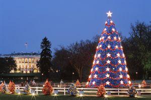 Washington, D.C. Christmas tree