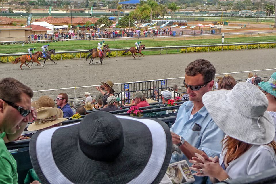 Watching the Races at Del Mar Race Track