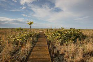 Boardwalk to Beach on Sanibel Island, Florida