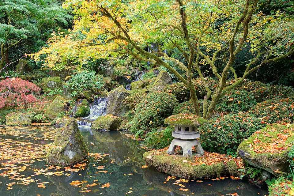 Things to do at washington park in portland oregon for Portland japanese garden admission