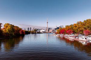 View of Toronto skyline from lake with seasonal autumn trees