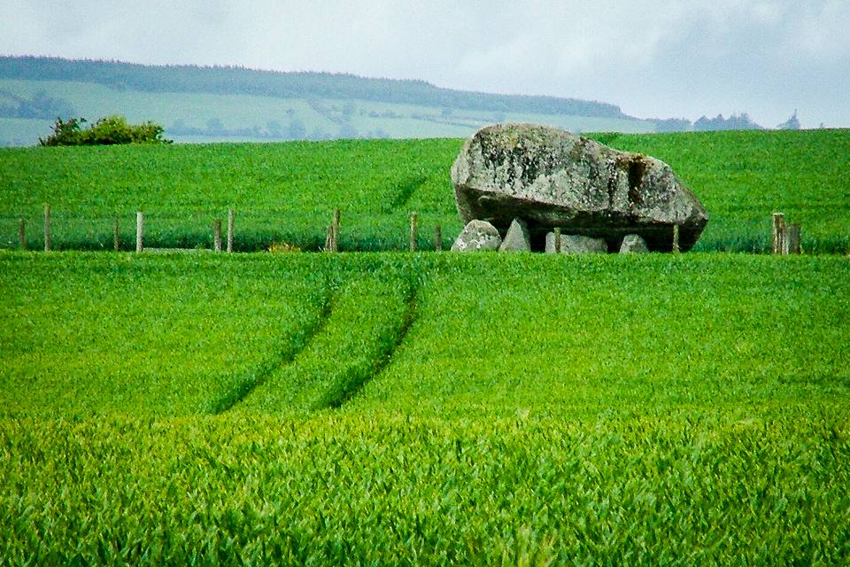 Grey stones in a green landscape - from the distance, the Brownshill Dolmen in County Carlow looks almost tiny