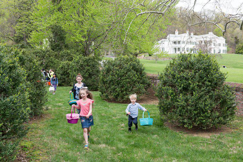 Children hunting for eggs at Morven Park in the Washington D.C. area