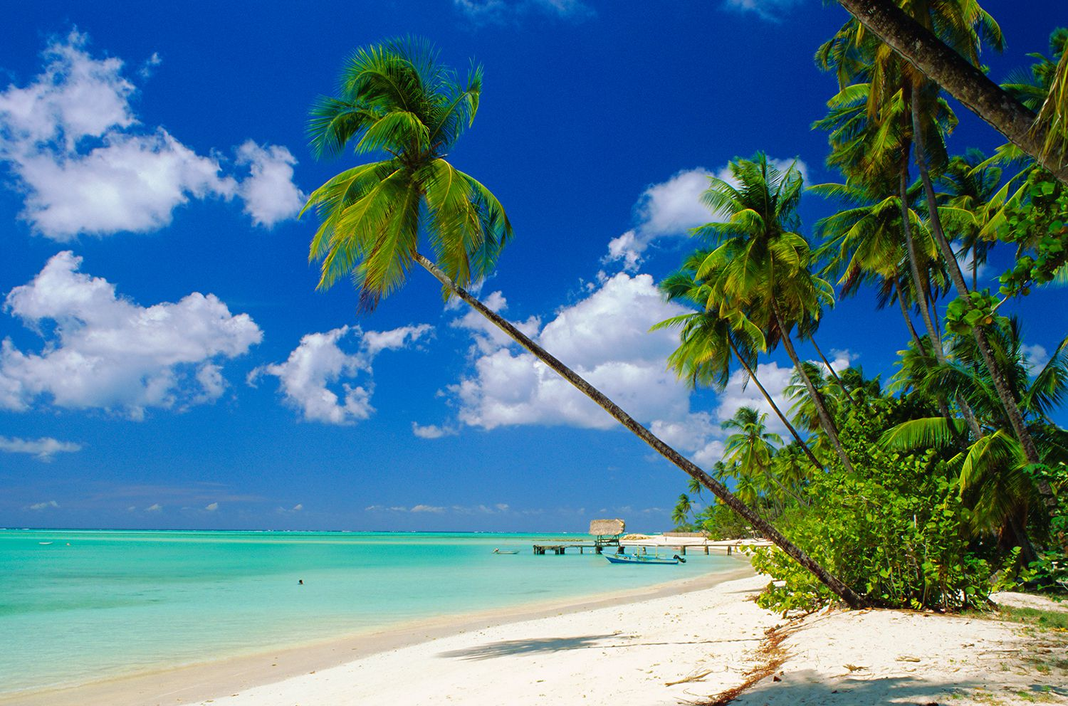 7 Best Beaches In Trinidad And Tobago
