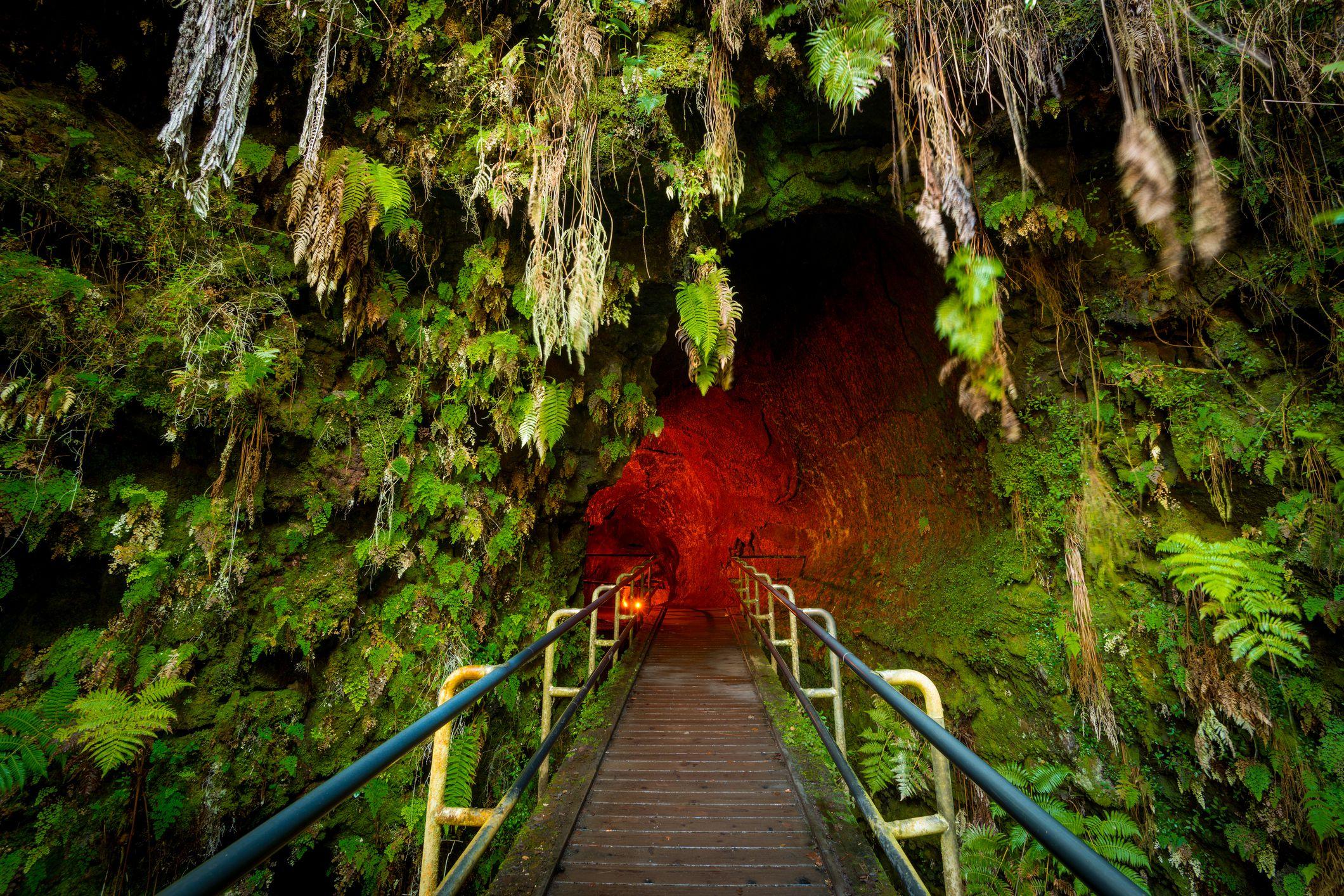 Entrance to the Thurston Lava Tube