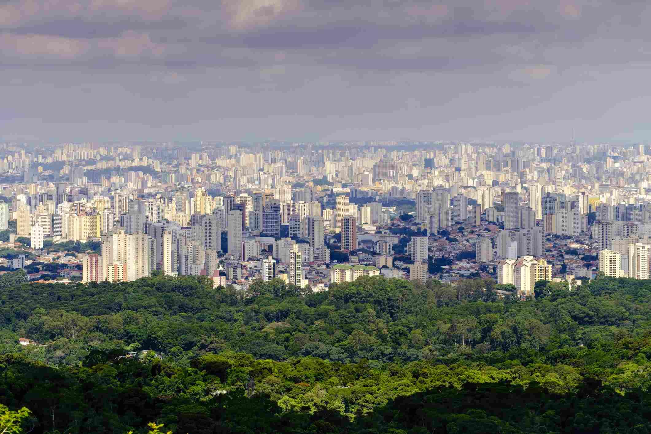 Sao Paulo from the Serra da Cantareira state park