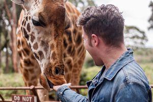 Nairobi Giraffe Centre Complete Guide