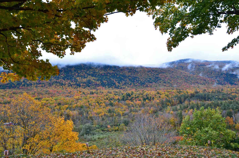 Wilburton Inn Vermont Fall View