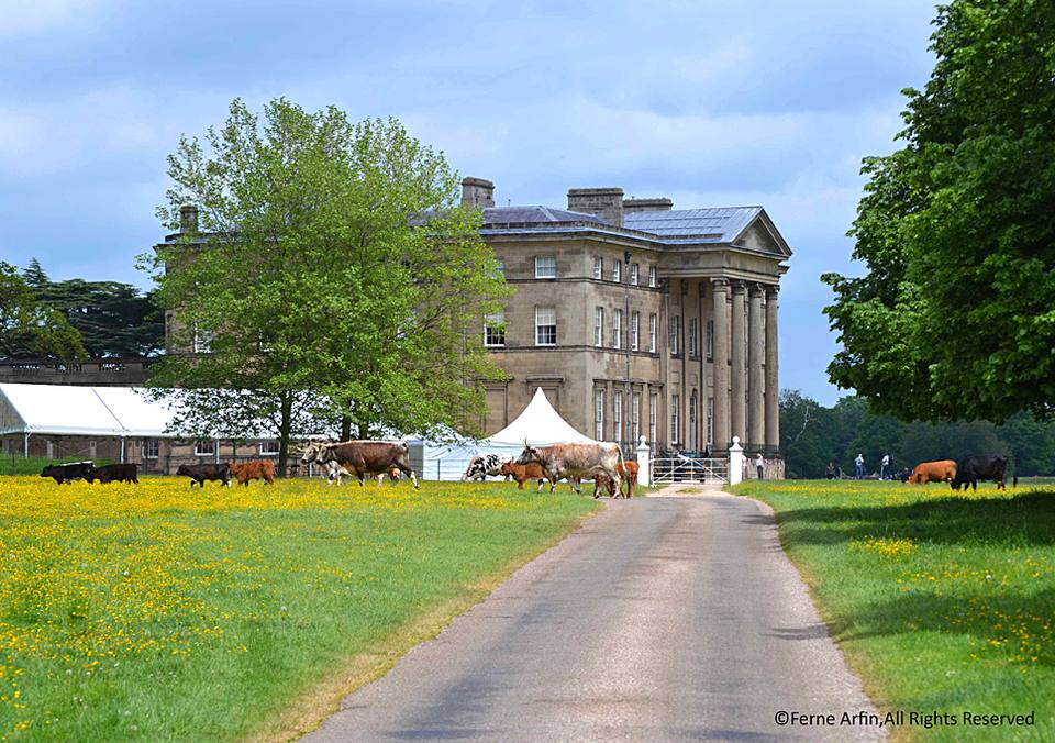 Attingham House in Shropshire