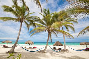 Beach with palm trees in Tulum