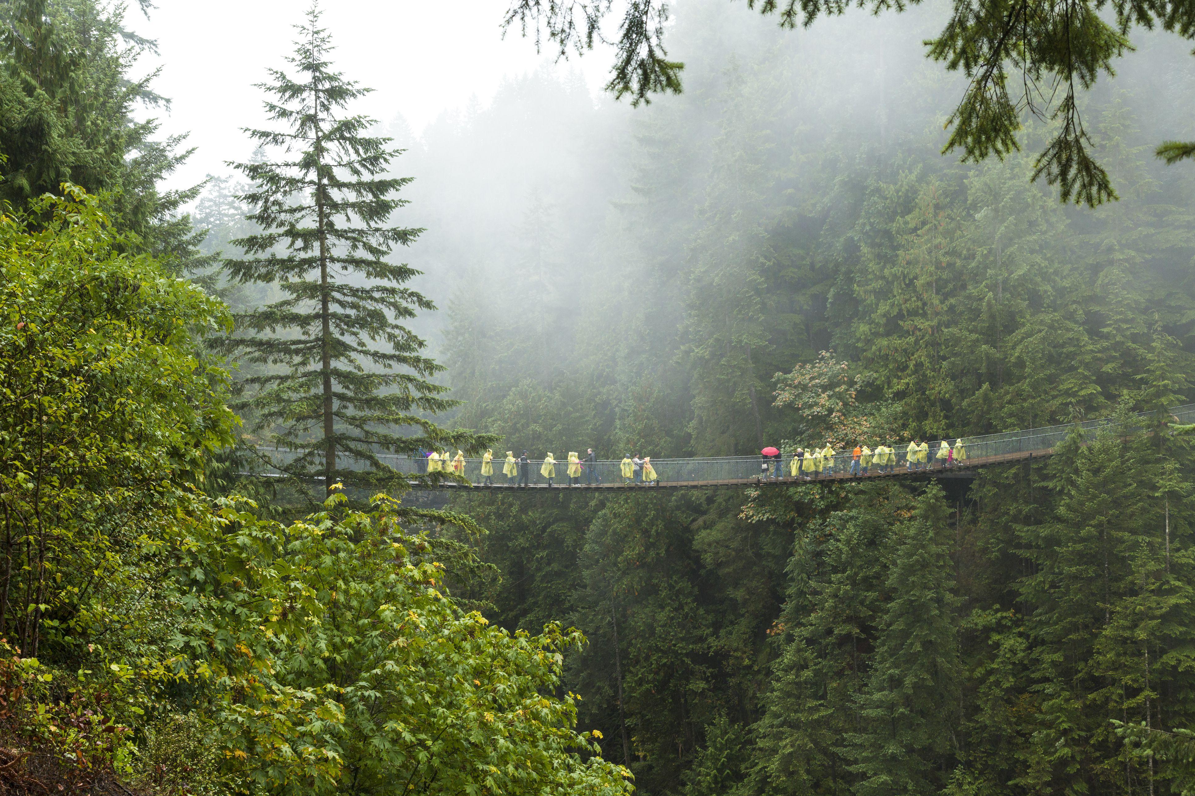 Tourists on Capilano Suspension Bridge and Park