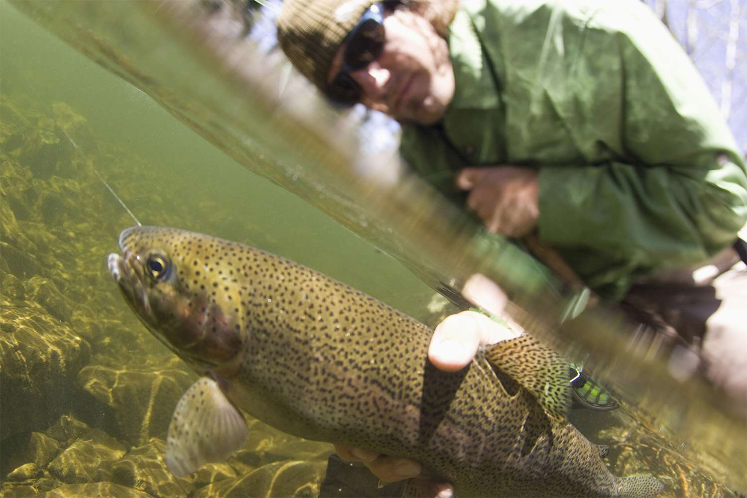 Fishing for Trout at Lake Tahoe
