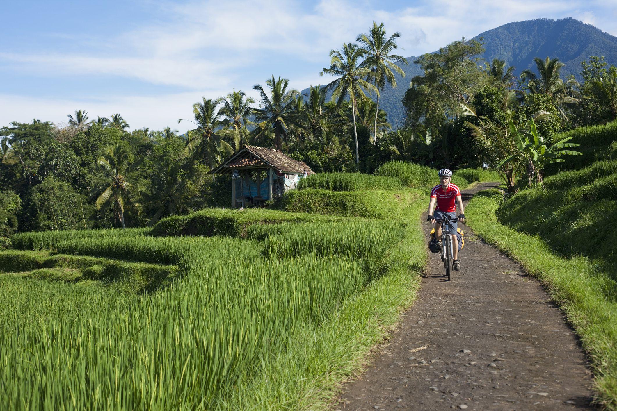 Indonesia, Bali, Tegalalang, Man cycling through country road