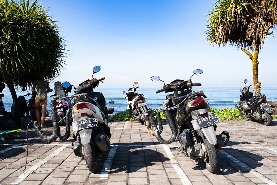 Motorbikes parked in a parking lot surrounded by palm trees