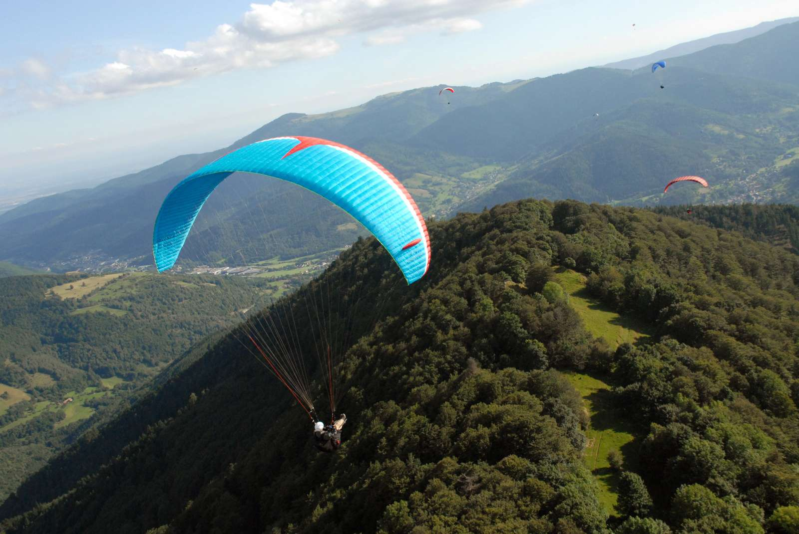 Paragliders soar over treetops in the Vosges