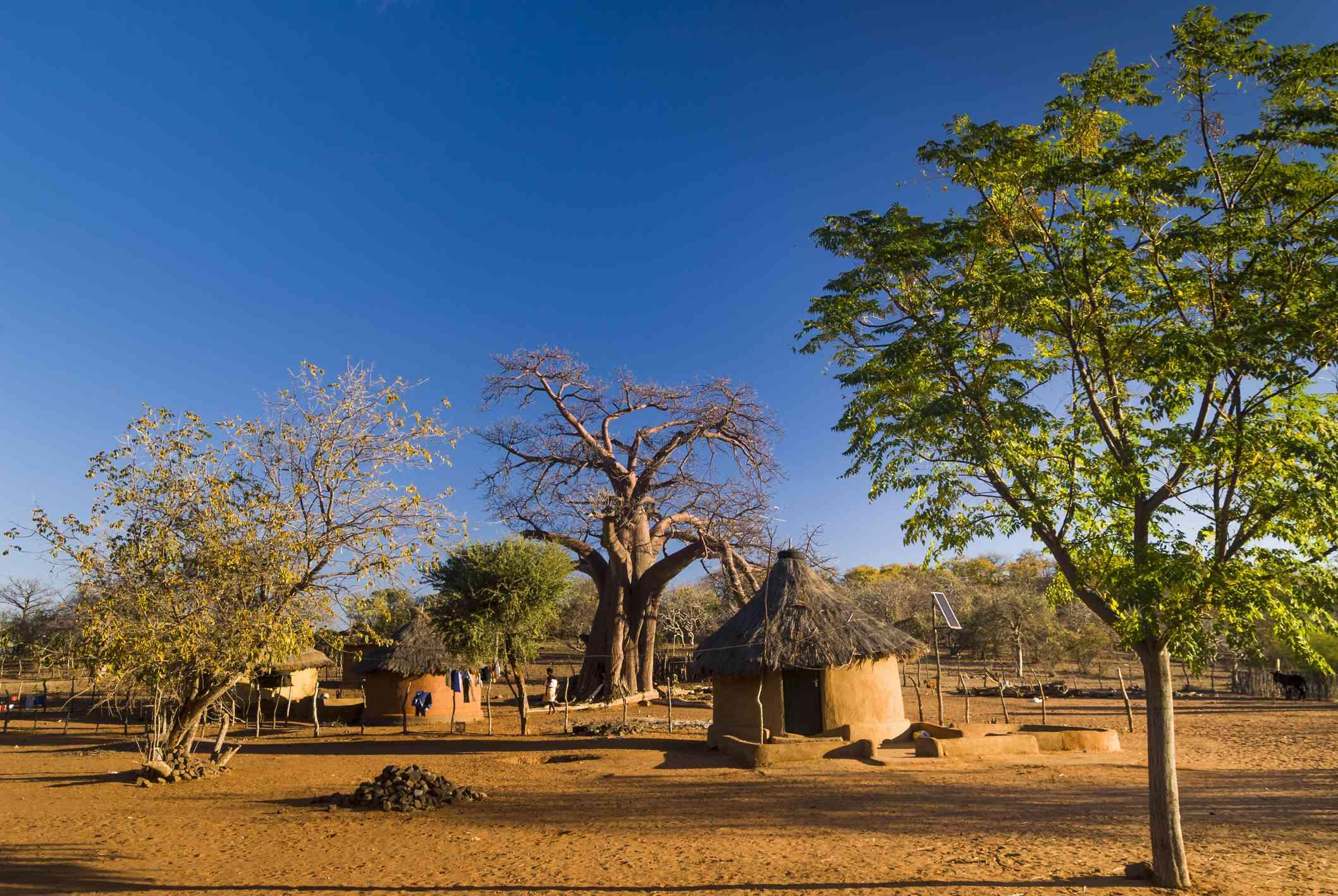 Tribal village in the Venda region of South Africa