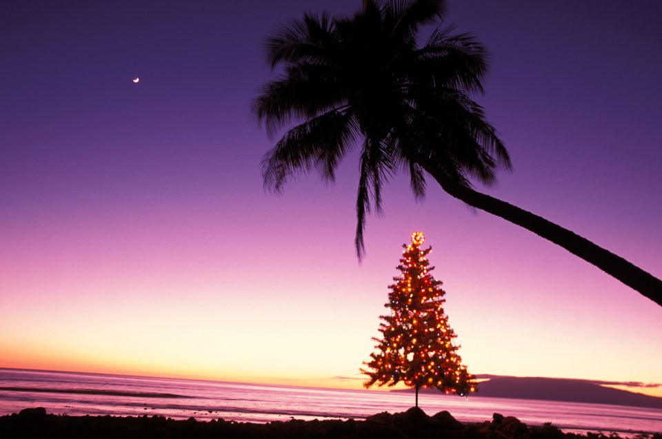 Hawaii Christmas.Hawaiian Christmas And New Year S Words And Phrases