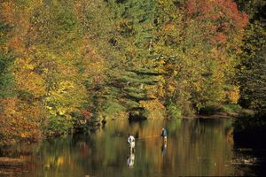 People fly fishing in Pennsylvania.
