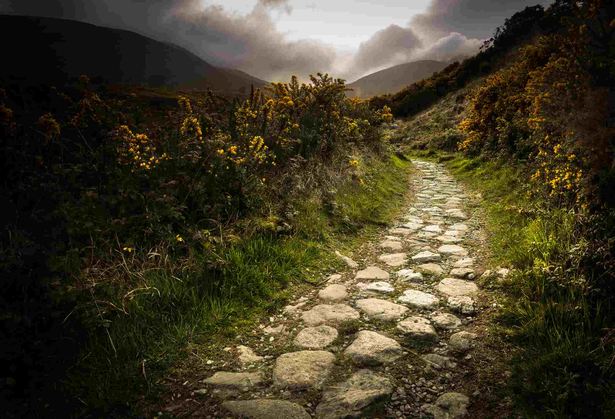 Path to Slieve Donard mountain