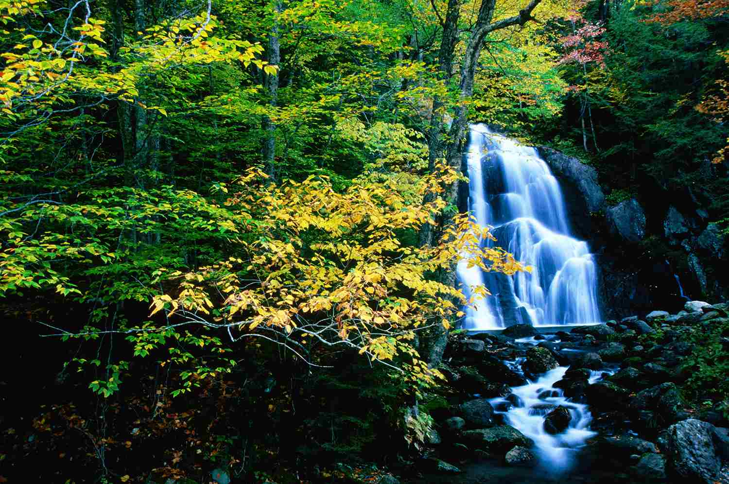 Green Mountain National Forest, Vermont, United States, New England, North America