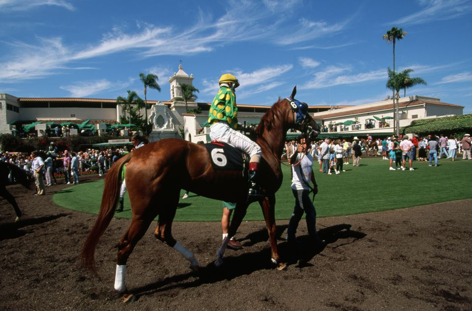 Horses Preparing to Race at Del Mar