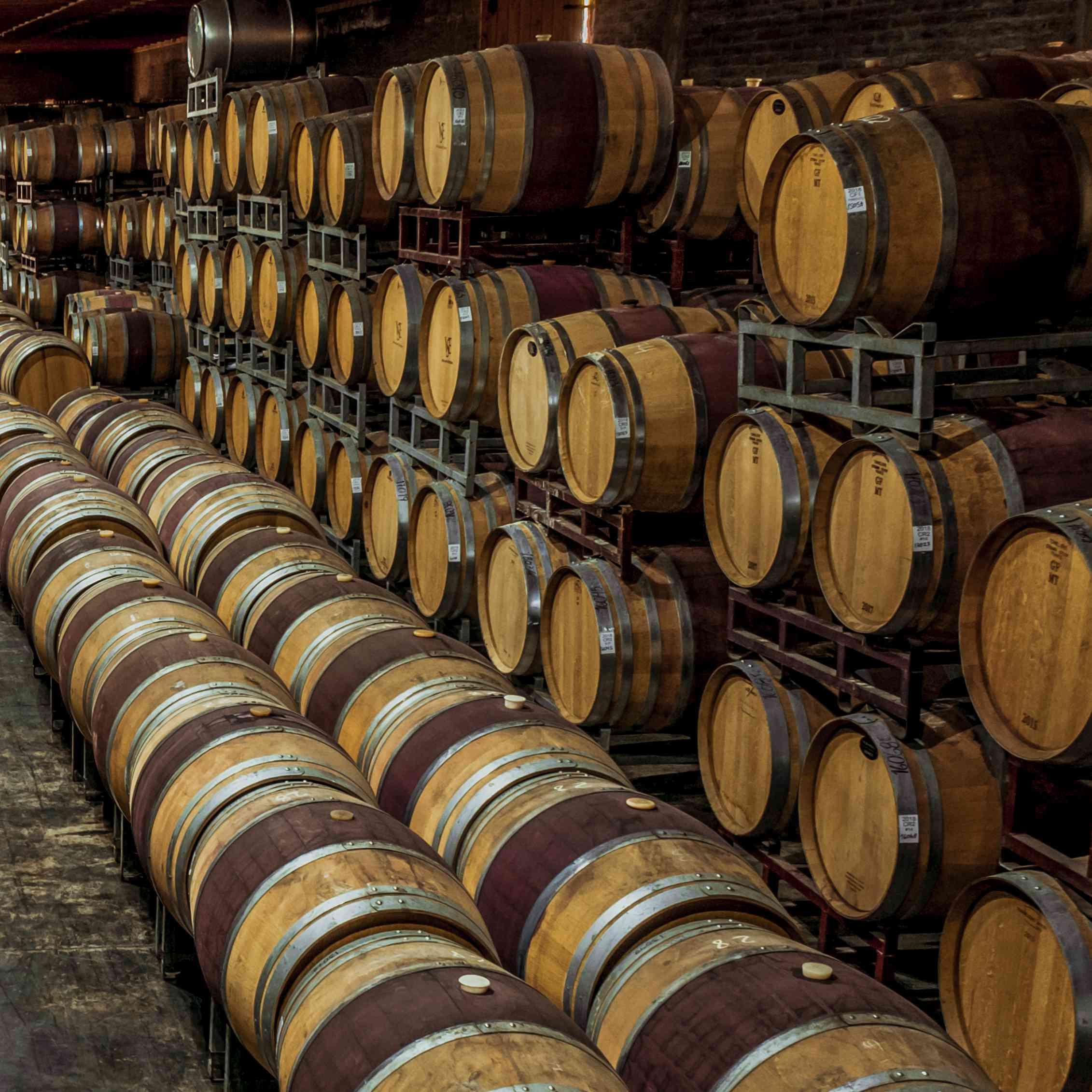 Numerosos barriles de vino