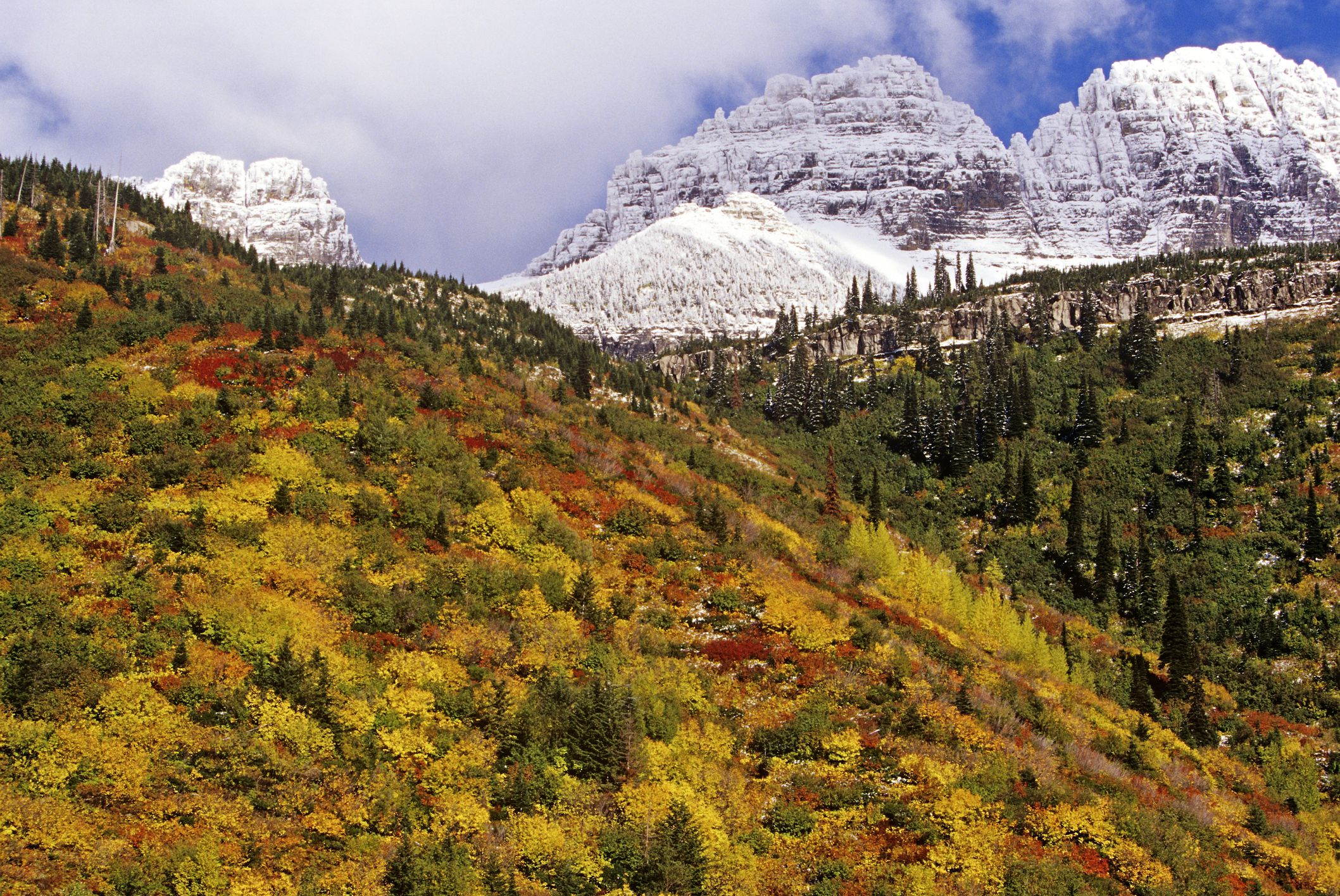Snowfall on Garden Wall with peak fall color in Glacier National Park, Montana