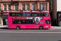 pink bus in belfast