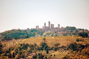 A view of San Gimignano from a far with a vineyard in the foreground
