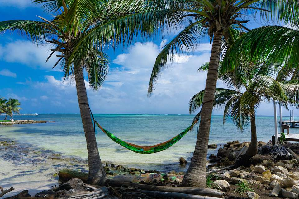 A hammock suspended between two palm trees on a beach in Belize.