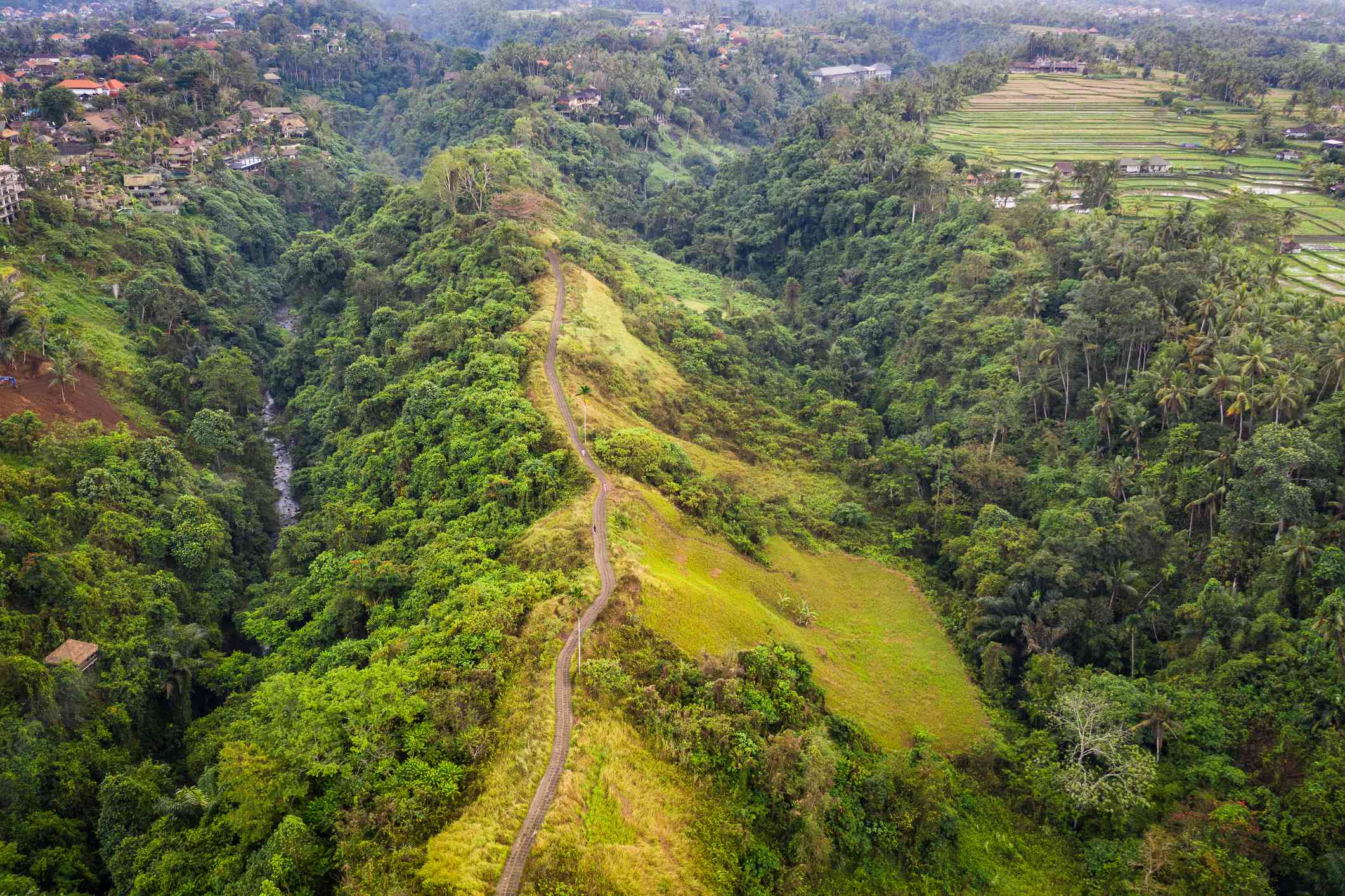Aerial view of the famous Campuhan ridge walk in Ubud, Bali island in Indonesia.