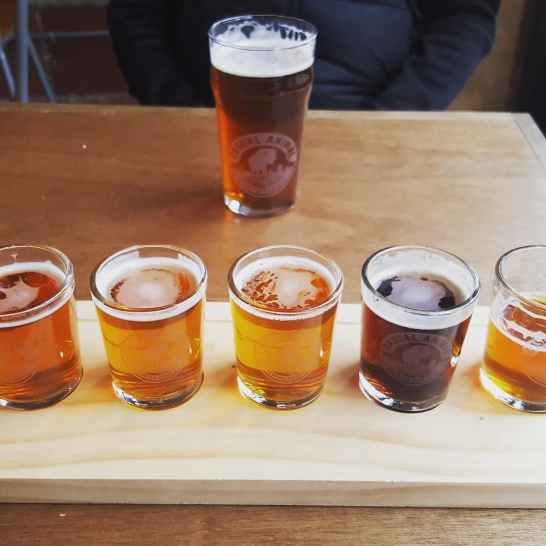 Casual Animal Brewing Co.