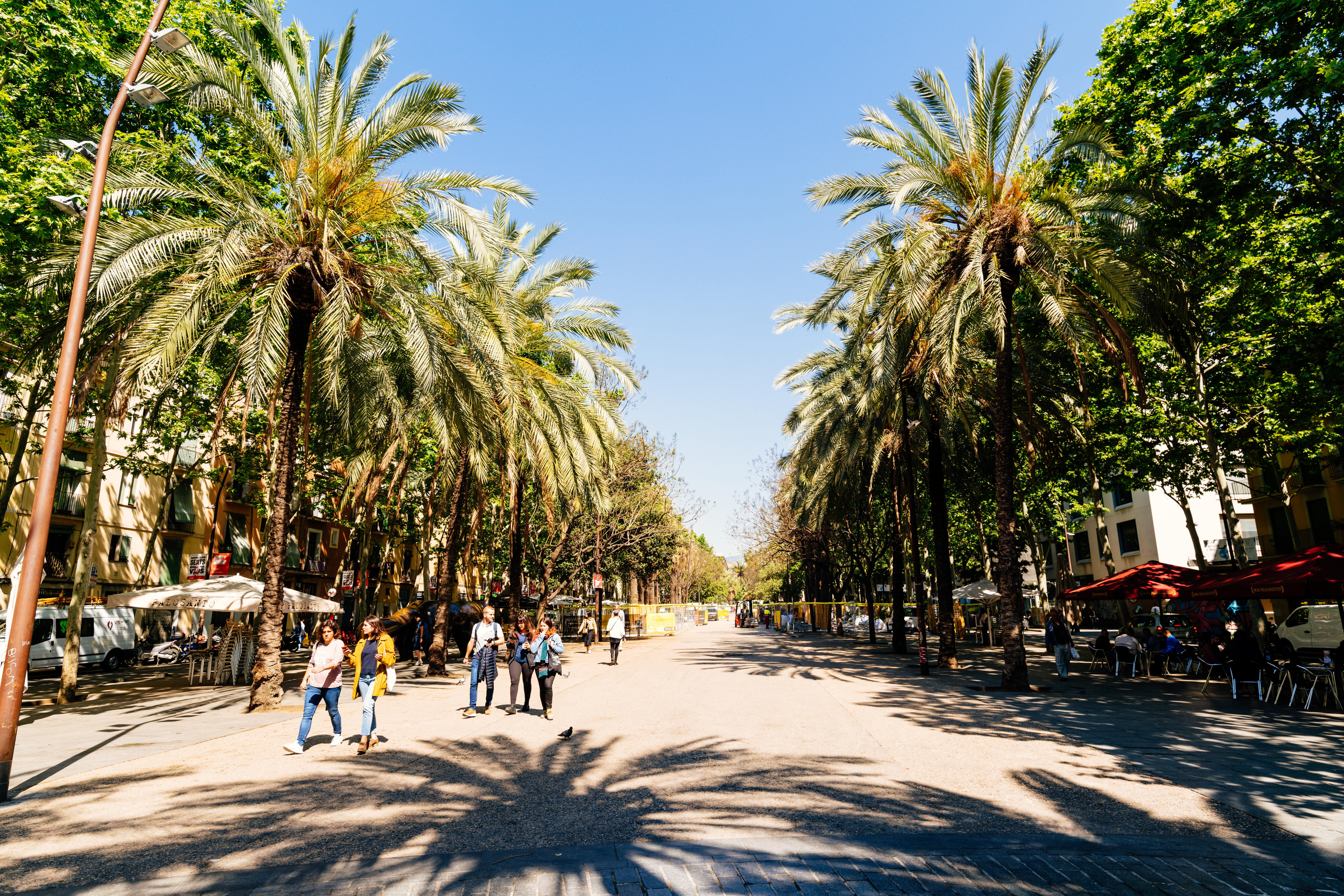 Palm tree lined pedestrian street in the Raval district of Barcelona