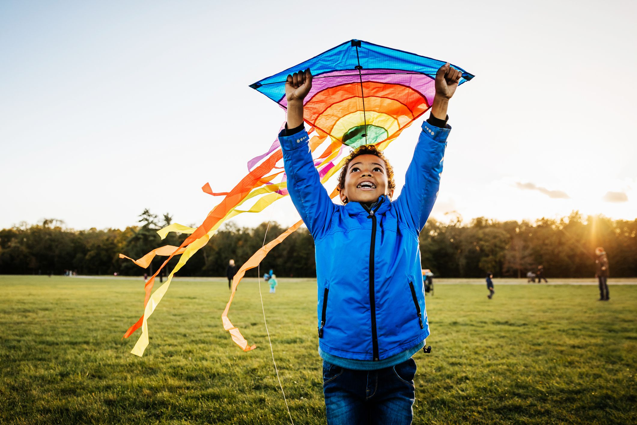The 8 Best Kites for Windy Days in 2019