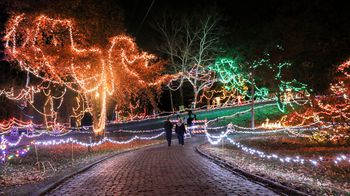couple walking down path lined with christmas lights